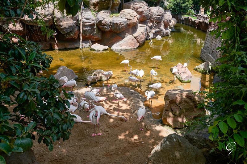 Biopark 300616W-129.jpg