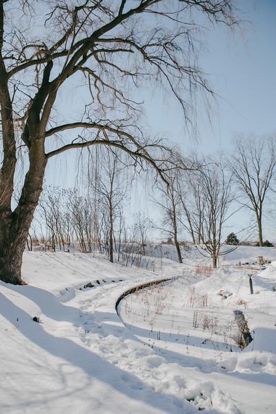 AVS_EcoPreserve_Winter2021-43.jpg