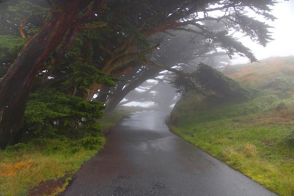 California Coast-8-2007