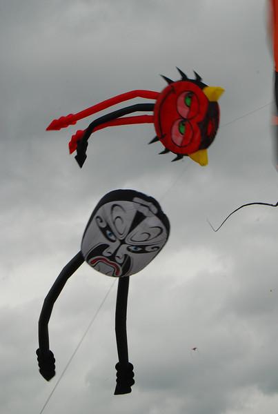 Austin Texas Kite Festival 2008