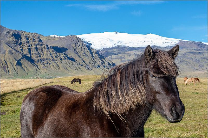 Icelandic Countryside_John Hoffman.jpg