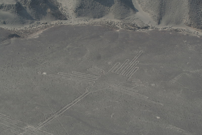 "Oh, but wait, there's more.  Are you ready for an experience of a life time?  To see one of the true mysteries of the world?  The Nazca Lines.  The famous ""hummingbird"" seen here.  Photograph by guide Richard Webster."