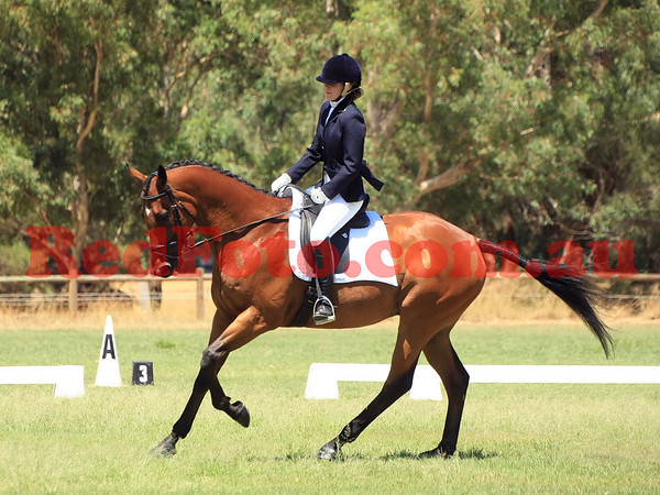 2014 02 01 Acres Dressage Series Grassed Arenas 11-00 till 12-00