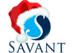 Savant Holiday Party 2017