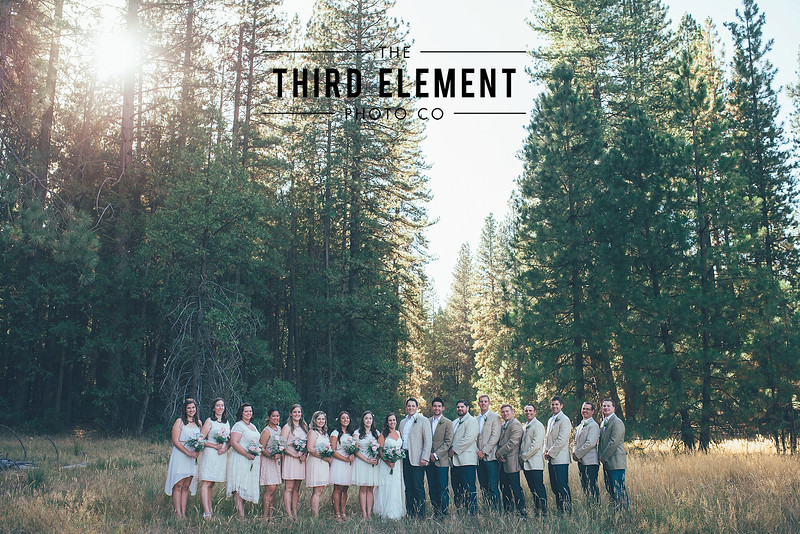 Third Element Photo Co Brittney + Errol Yosemite Wedding Hetch Hetchy San Francisco_0010.jpg