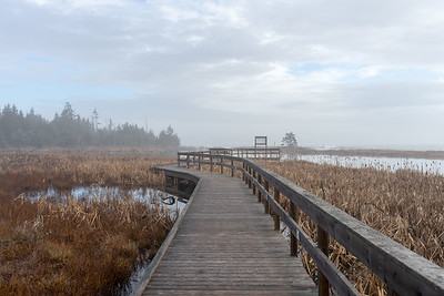 Coastal Access Park