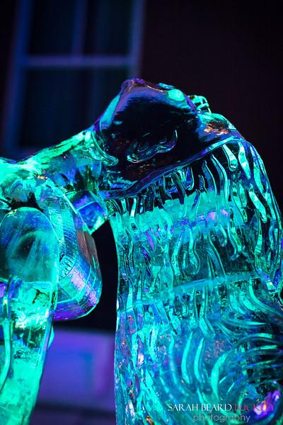 2015 Ice Bar