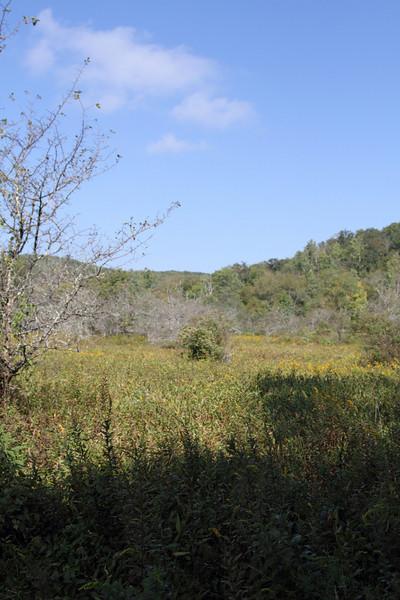 Boone's Fork Trail