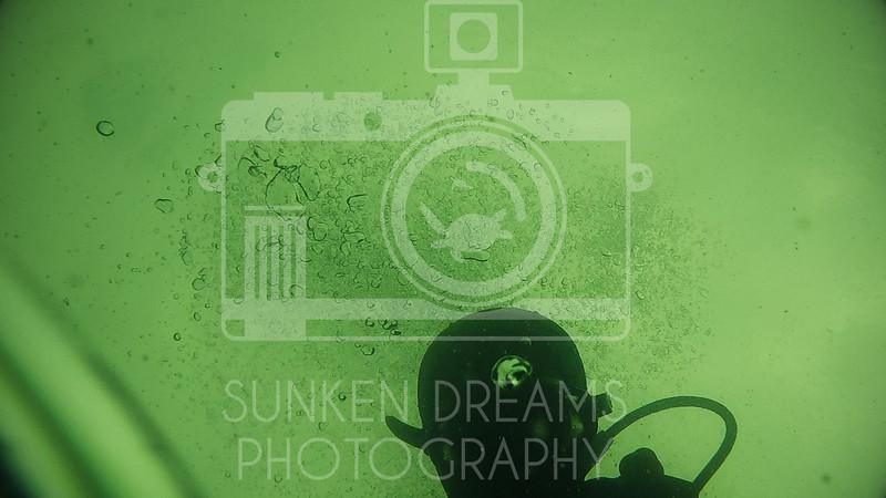 Ditcham Park Edit 2.00_01_37_07.Still043.jpg