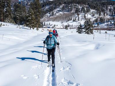 Sally Overlook XC Ski, Feb 2021