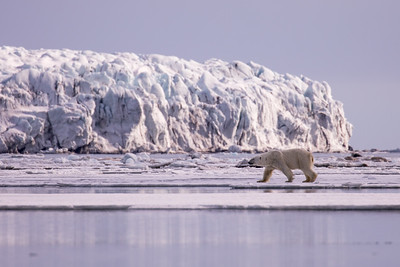 Norway and Svalbard 2018