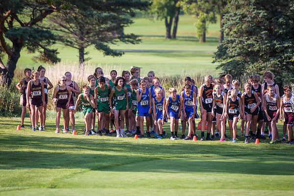 2017_LHS_Cross_Country