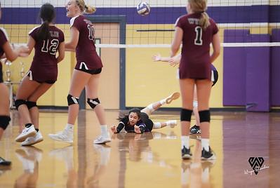 Freshman RHS Volleyball vs Wylie/Mesquite Horn