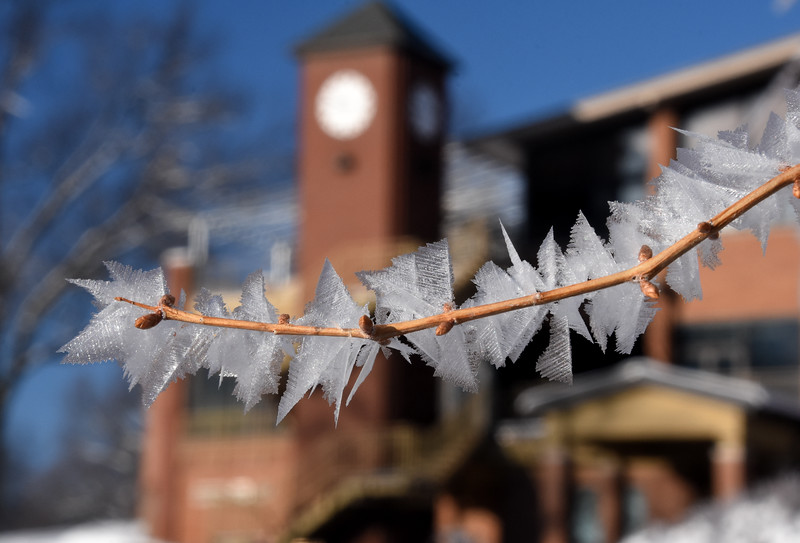 HoarFrost-Firestone-Feb18-2016.jpg