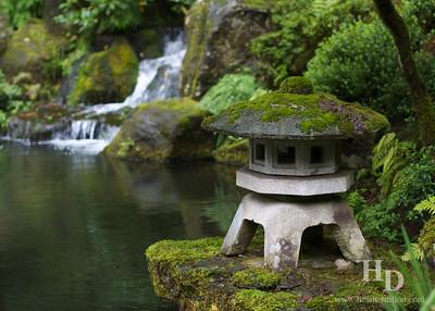 2011-10 Portland Japanese Garden