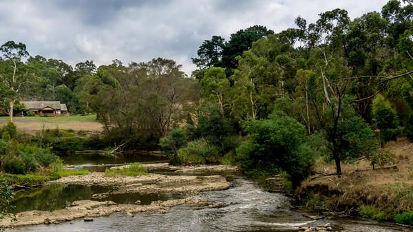 Yarra Valley Trail - 25 February