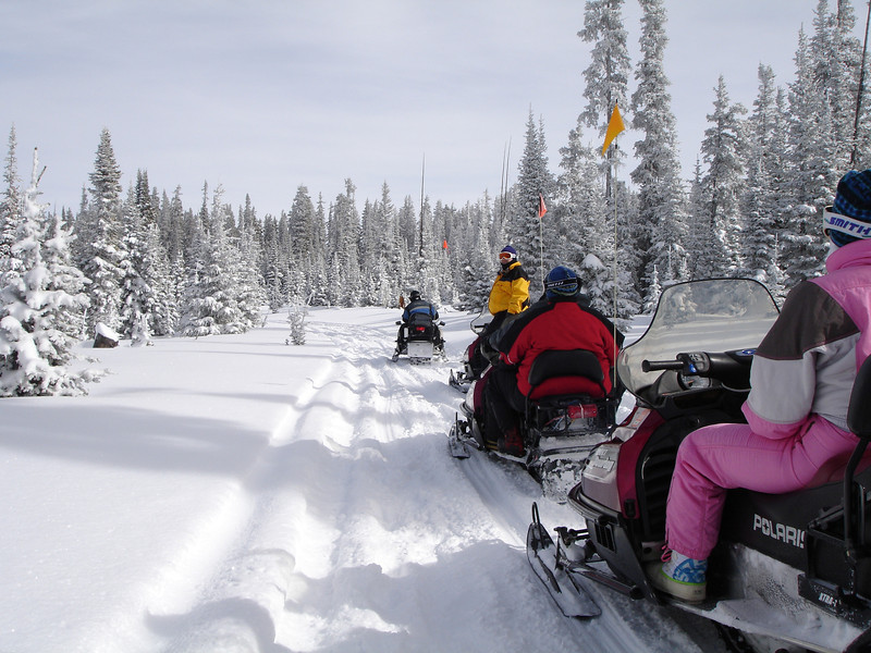 snowmobiles1.jpg