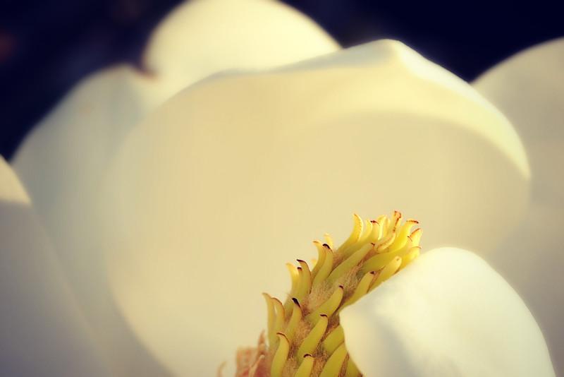 LTD_2012-04-26_0408_3