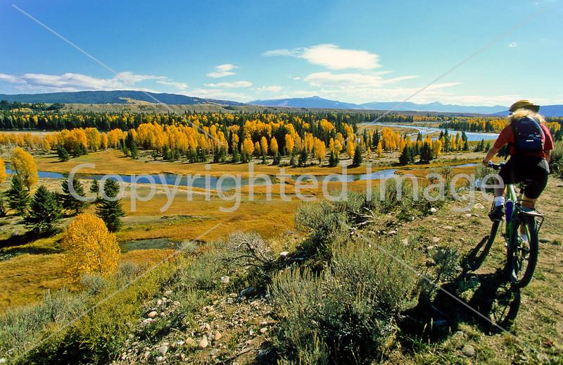 Biking in Fall - Tetons & Yellowstone