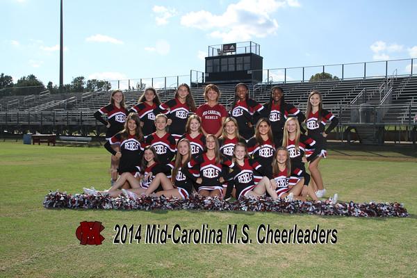 2014 Cheer