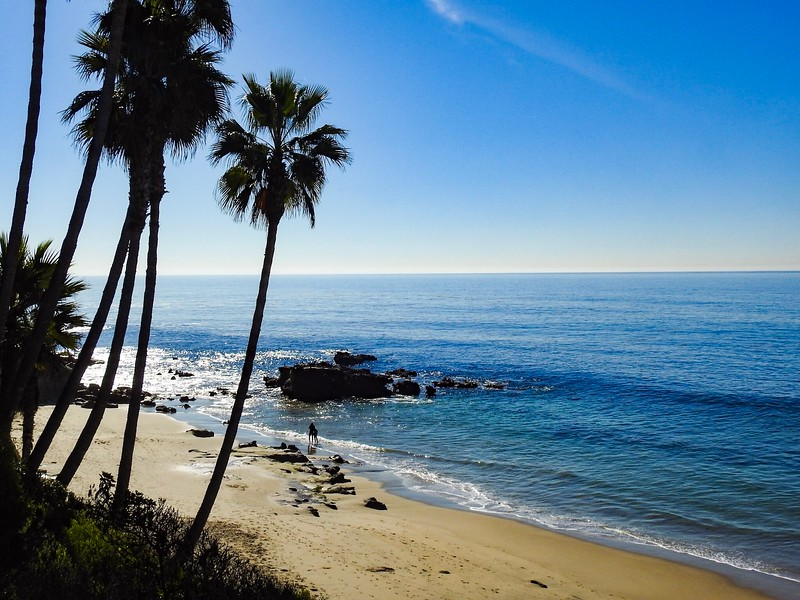 115.Mark Murray.2.Winter in California.jpg