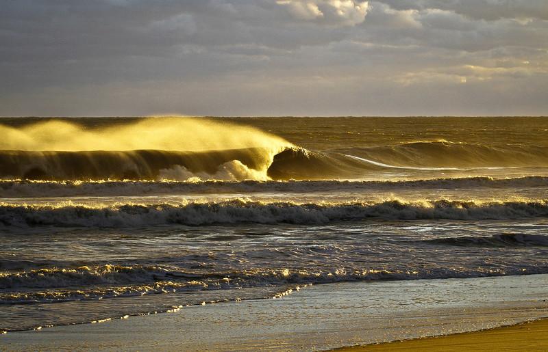 Surfline_Empty2.jpg