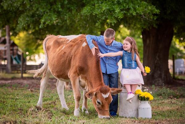 Cow mini March 2021 - DelPercio