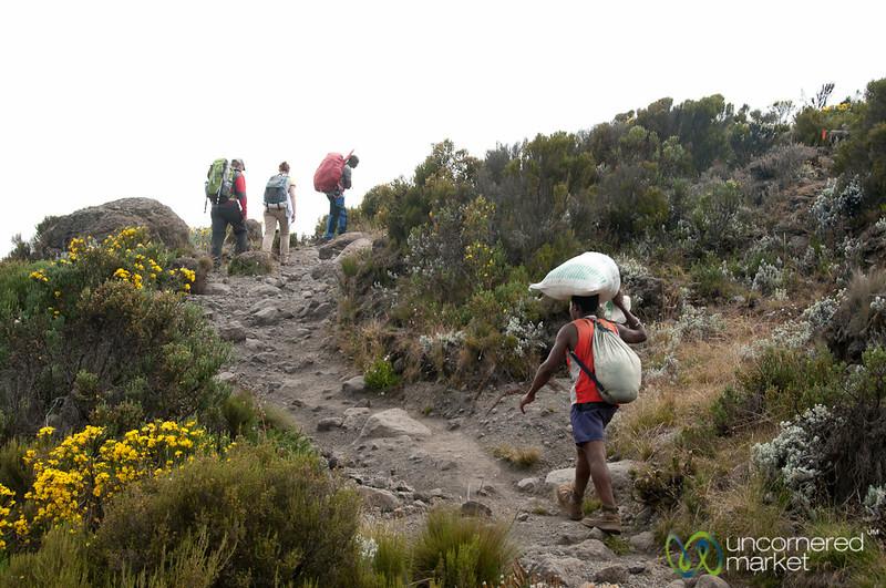 Porter Carrying Gear - Mt. Kilimanjaro, Tanzania