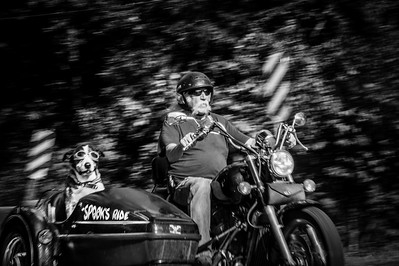 Spook (the dog) & Steve Holloway