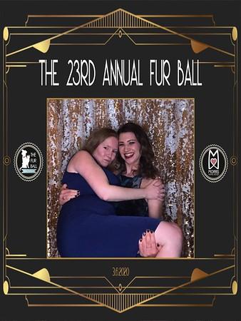 2020 FurBall
