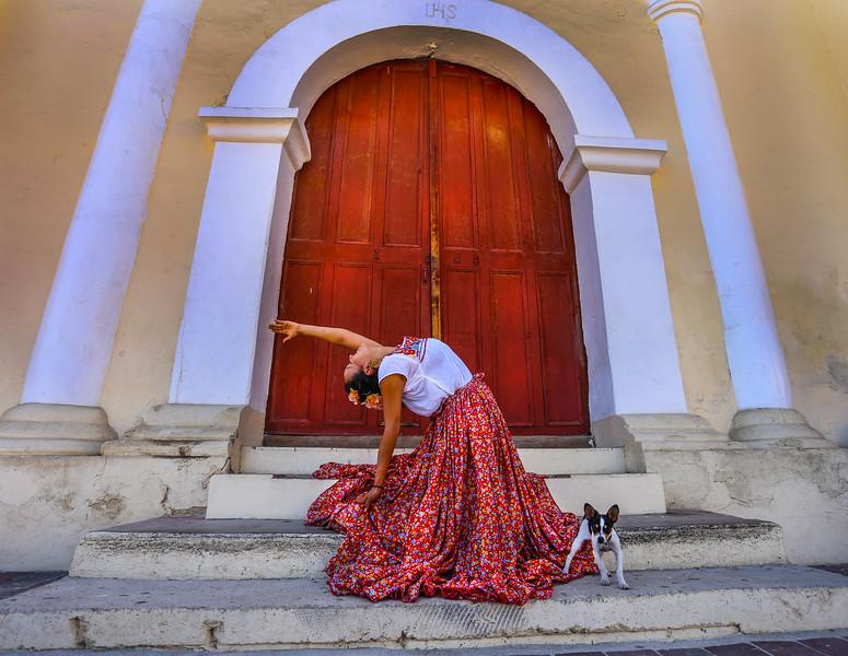 Camel and Chihuahua ~ Todos Santos, Mexico