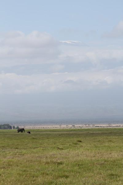 Kenya 2019 #2 815.JPG
