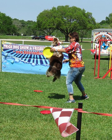 Paws in the Park Pearland 03/2017