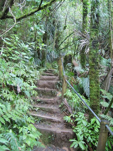 stairs_3.jpg