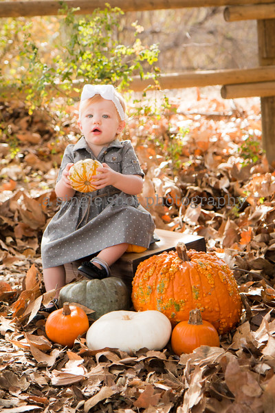 Fulton: Fall Minis
