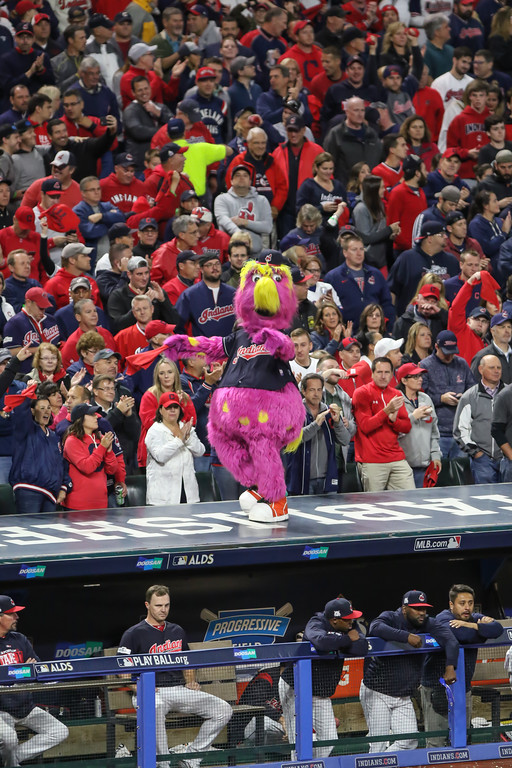 . Tim Phillis - The News-Herald Scenes from Game 5 of the ALDS between the Indians and the Yankees at Progressive Field in Cleveland.