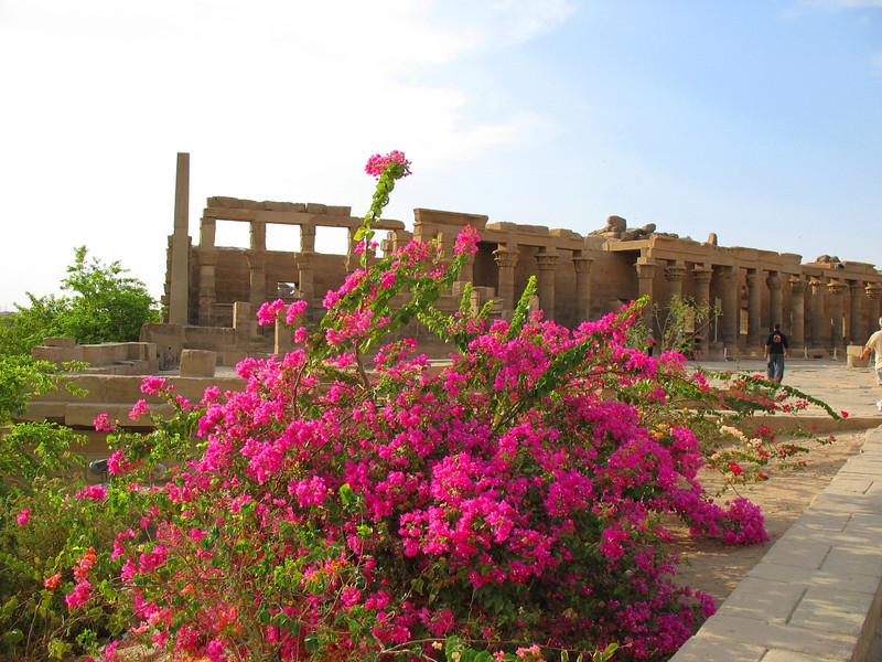 Egypt-171.jpg