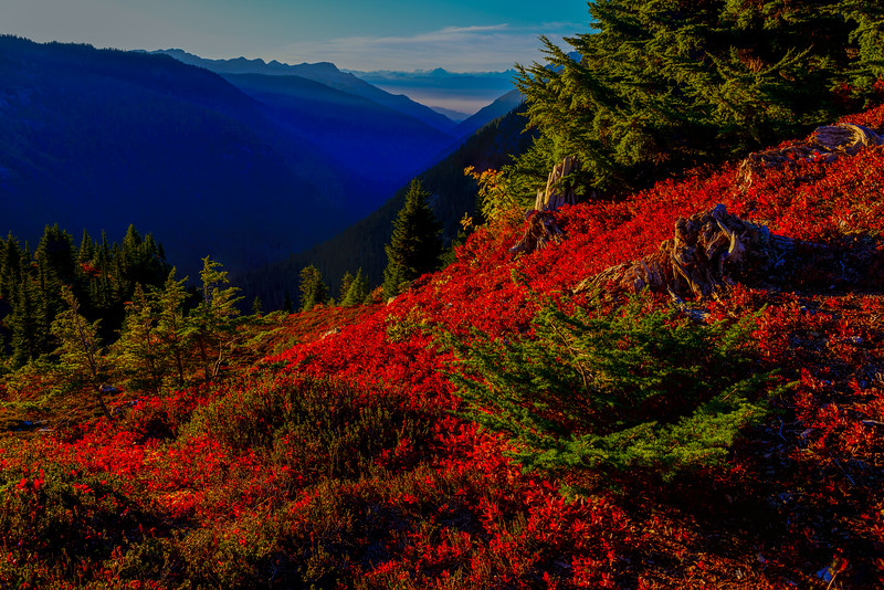Yellow Aster Butte_9_17 (36 of 236)-Edit.jpg