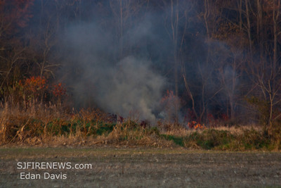 11-19-2011, Brush, Upper Pittsgrove Twp, Salem County, 370 Monroeville Rd.