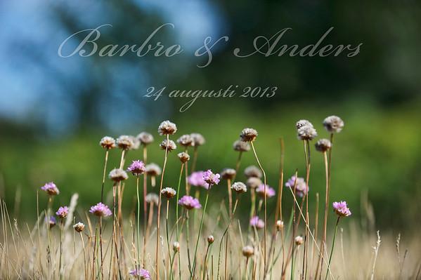 Barbro & Anders