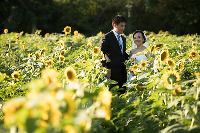 20170730_AnneMike_Sunflowers