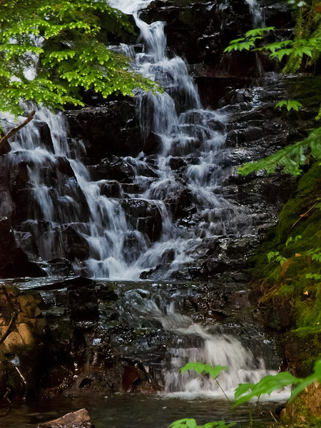 This is a tiny hidden waterfall along the trail to Tombstone Pass