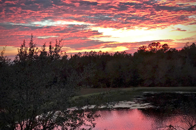8_1_19 Beautiful Sunset From Our Backyard.jpg