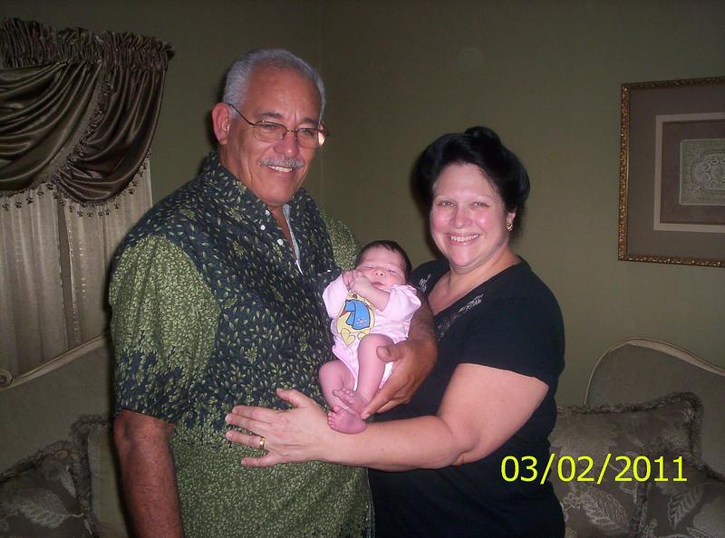 2011-02-22 | Elani