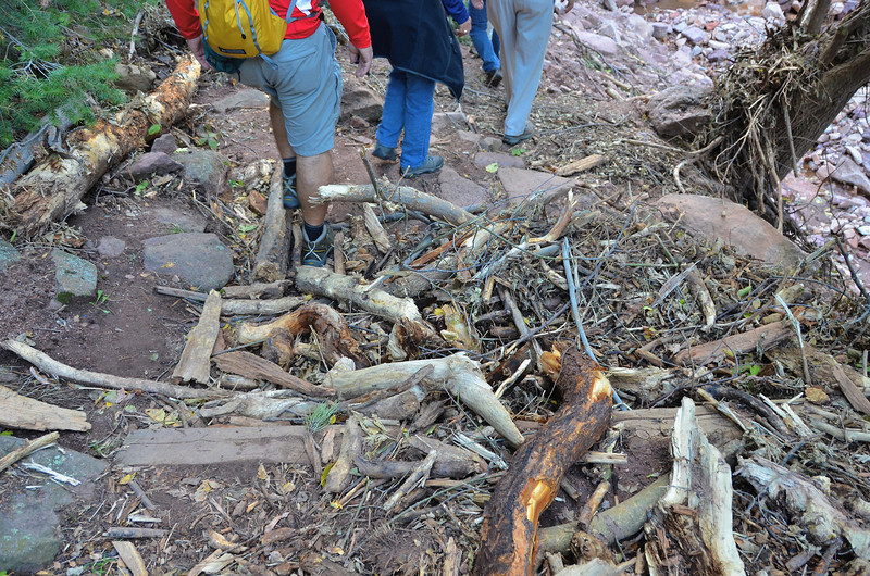 Debris on trail.