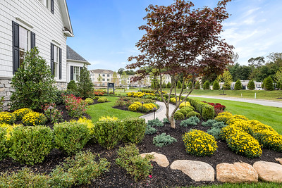 Landscaping Franklin Lakes