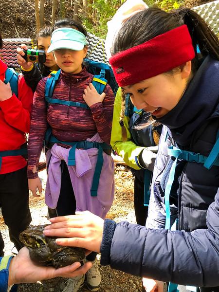 Grade 11 Expedition-Japan on Foot-IMG_0809-2018-19.jpg