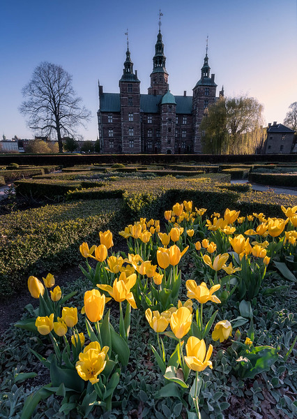 tulips & Rosenborg Castle copy.jpg