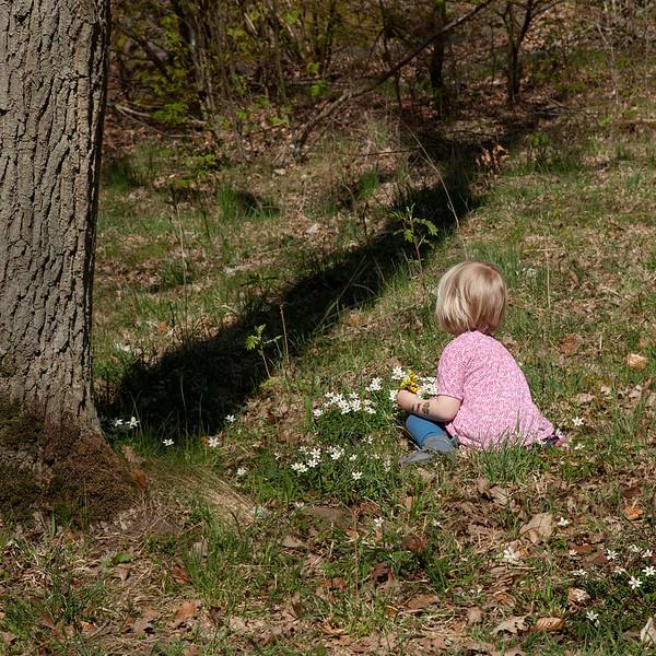 Dag_020_2012-maj-01_5428.jpg