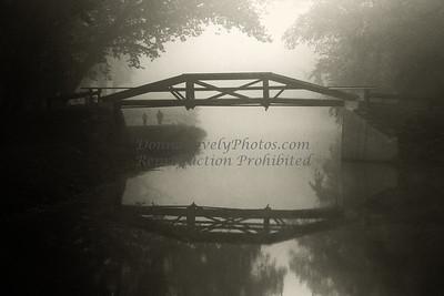 Foggy photos